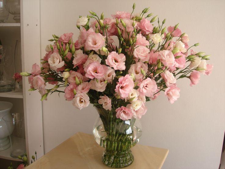 vaso grande com lisianthus rosa my garden pinterest. Black Bedroom Furniture Sets. Home Design Ideas
