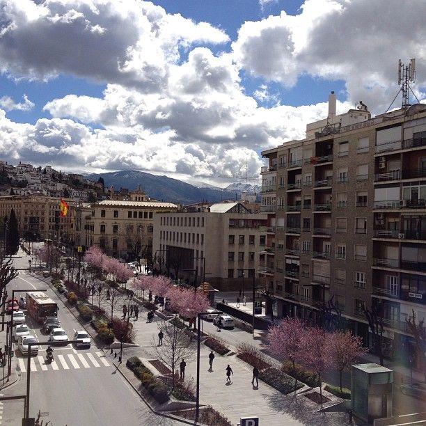 Macia Condor Hotel Granada in Granada - hotel #3