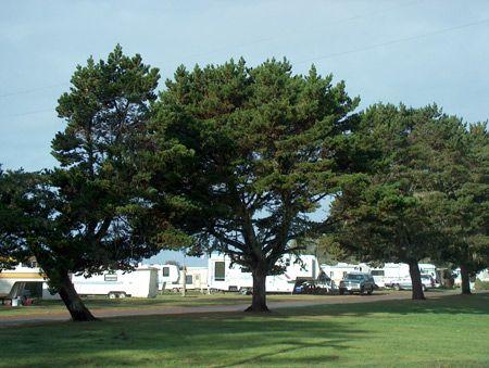Camping And RV Park At The Ship Ashore