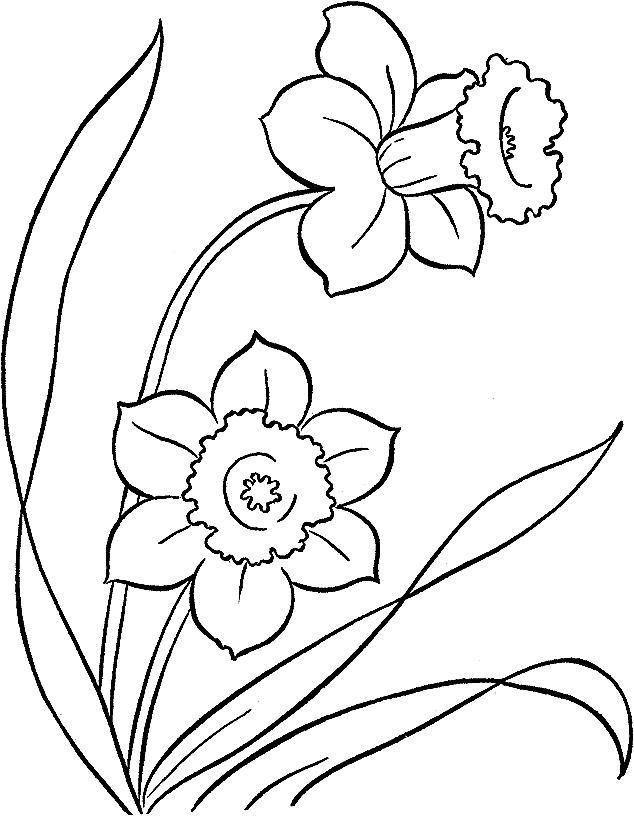 Ausmalbilder Fruhling Kinder Fruhlings Malvorlagen Helfen Sie Kindern Und Erwachsen In 2020 Printable Flower Coloring Pages Poppy Coloring Page Spring Coloring Pages