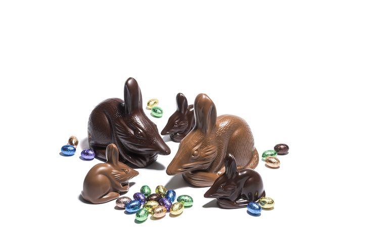 Haigh's Easter Bilbies, Premium milk and dark chocolate.