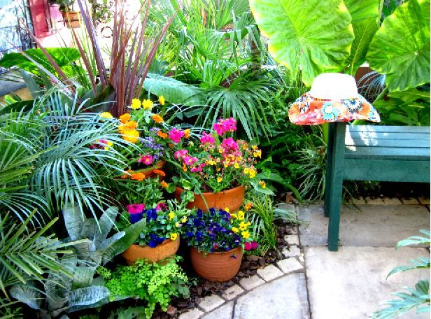 Splashes of brightly coloured annuals, planted in aged terracotta pots, placed around the garden.