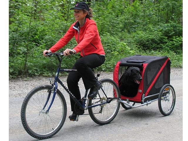 dog bike trailer i love my dog pinterest bike. Black Bedroom Furniture Sets. Home Design Ideas