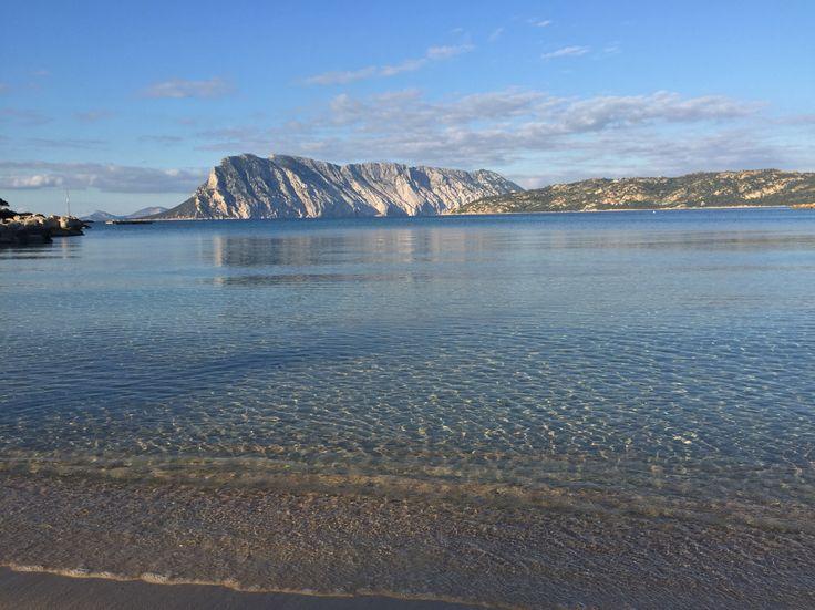 Tavolara da Cala Brandinchi #sardegna #calabrandinchi #sardinia #beaches #immobiliare #realestate #islands #tavolara