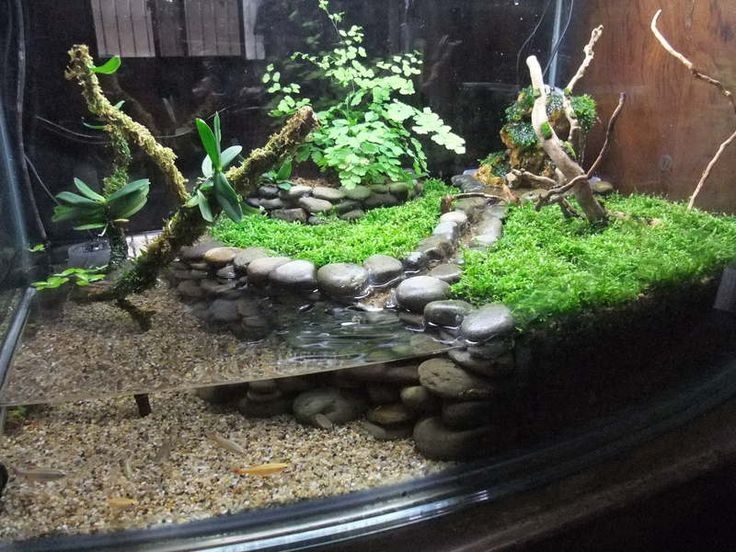 I love the river rock wall. Seems easy to make with just a little silicone.