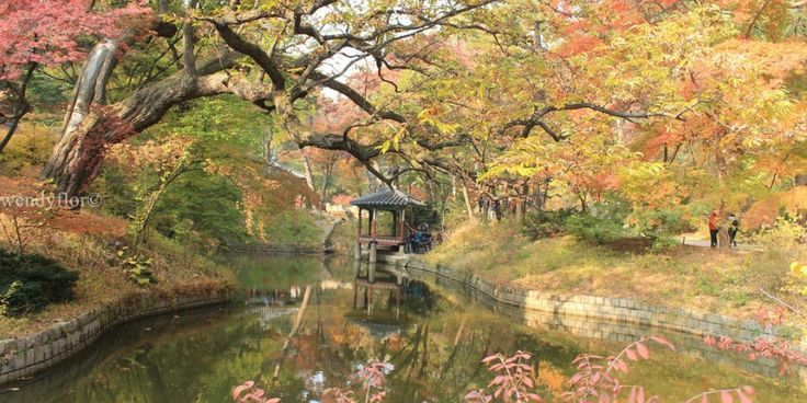 Autumn Afternoon at the Secret Garden