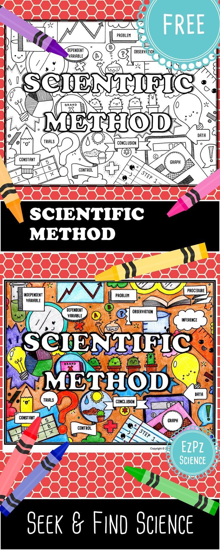 Free Scientific Method Seek & Find Color/Doodle page. Great for pre-assessment, ISN title pages, DIY/station, group work or reinforcement