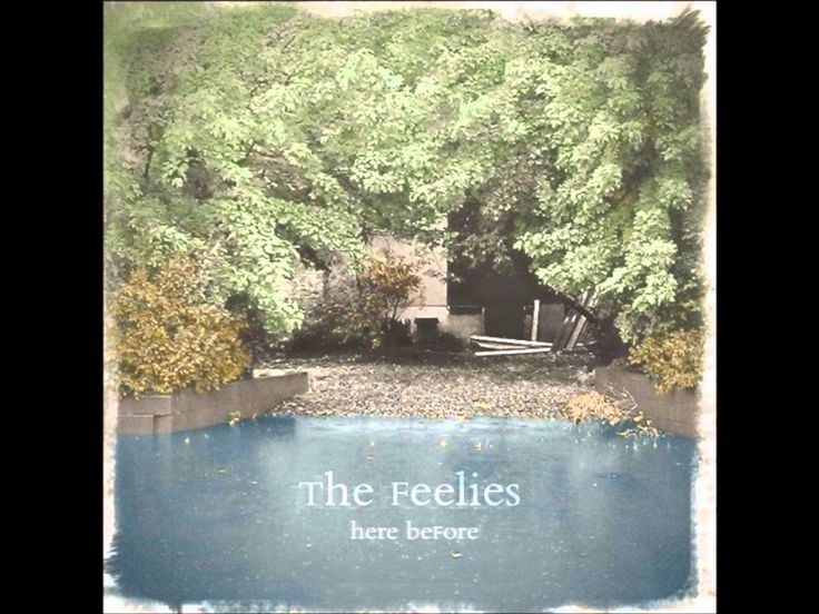 The Feelies- Later On