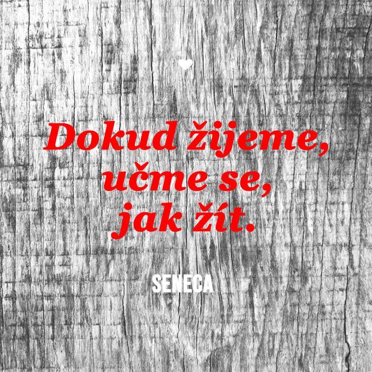 Citáty o životě - Seneca