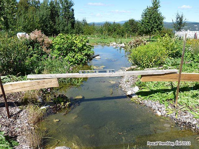 Comment construire un pont en bois en arc - Aménagement d'un pont au bassin