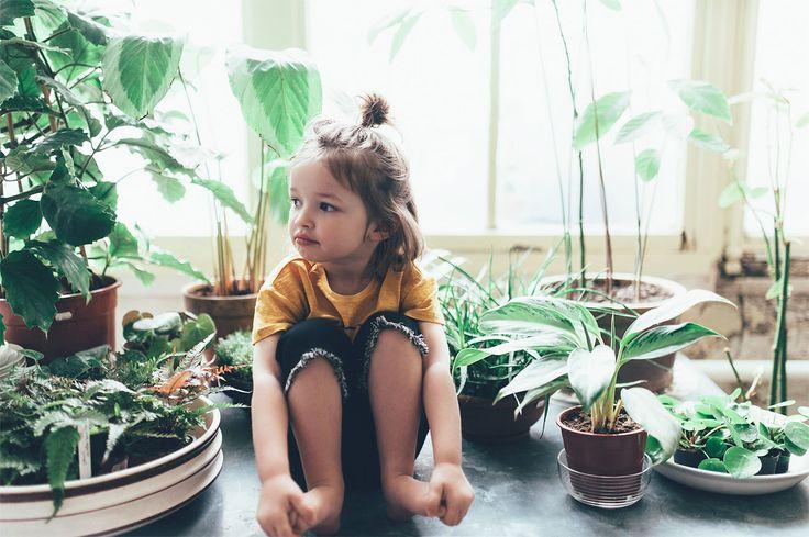 ARTISAN CAPSULE-BABY GIRL | 3 months-4 years-KIDS | ZARA United Kingdom