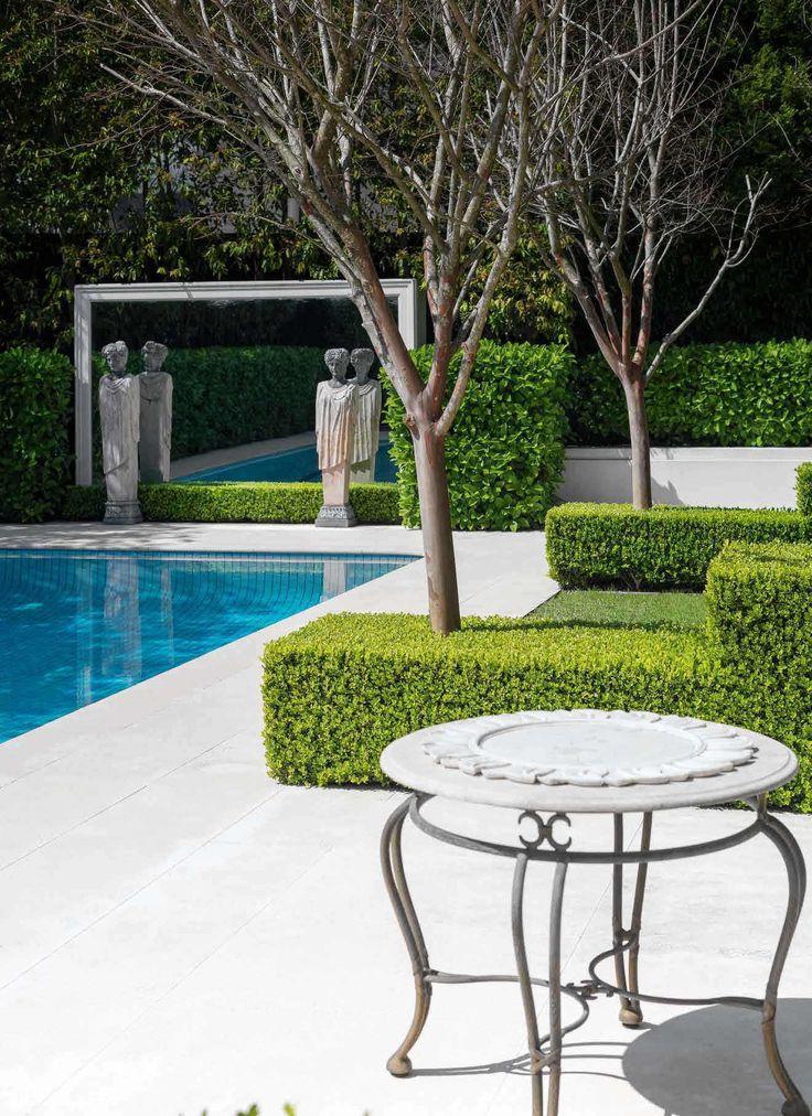 Hedge Fund Hedges, Backyard, Garden makeover