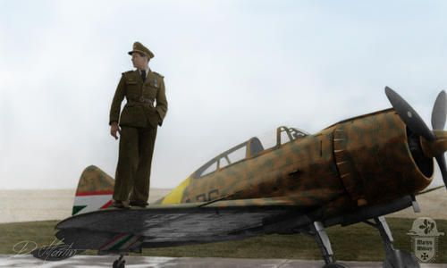 NCO from the RHAF gaze upon the countryside atop his Italian-built Reggiane Re.2000 fighter plane.