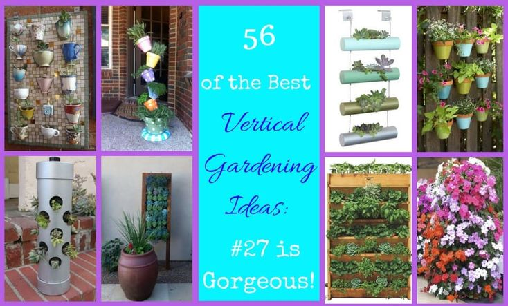 56 of the Best Vertical Gardening Ideas: #27 is Gorgeous!