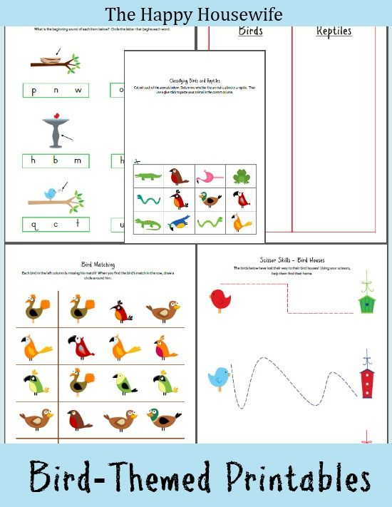 Free Bird Themed Printable Worksheets ~ geared for K-2nd | The Happy Housewife