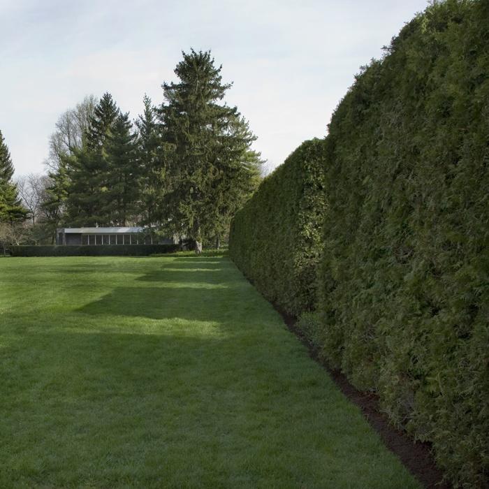 Garden In House 80 best miller house and garden images on pinterest | miller house