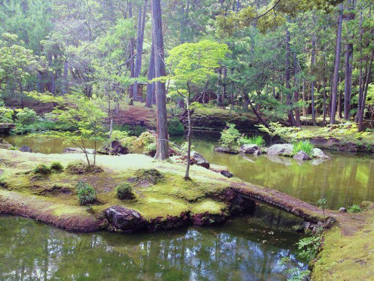 kokedera: Kyoto temple de mousse