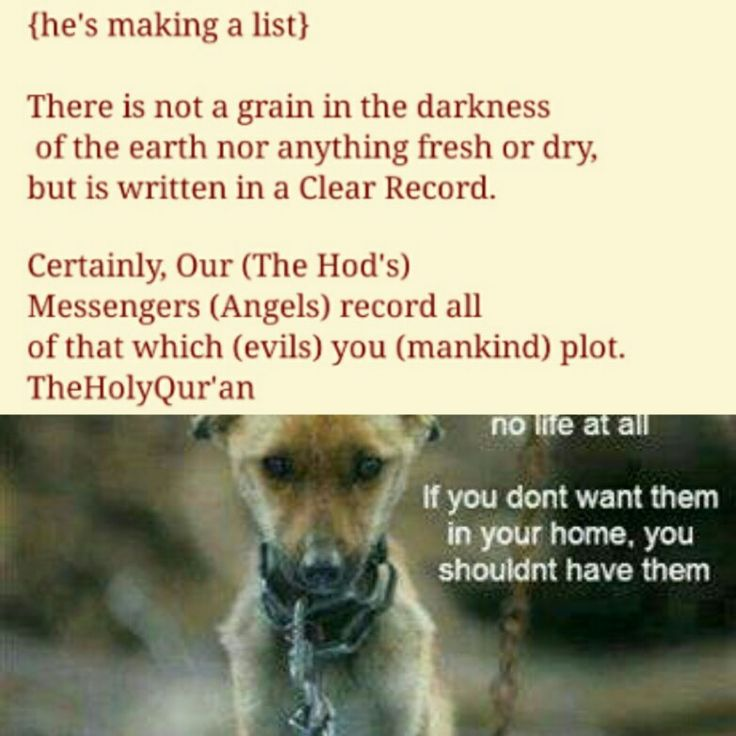 Pin by Hope Williams on Santa Lists to make, Writing