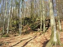 Ober Kainsbach 29 best heimat images on search html and boathouse