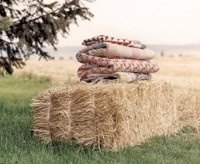 Blankets and hay