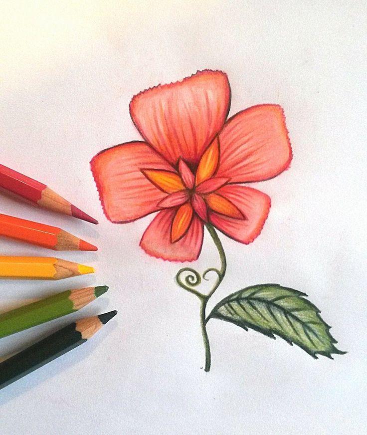 fantasy flower  made with Albrecht Dürer color pencils