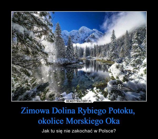 Zimowa Dolina Rybiego Potoku, okolice Morskiego Oka – Jak tu się nie zakochać w Polsce?