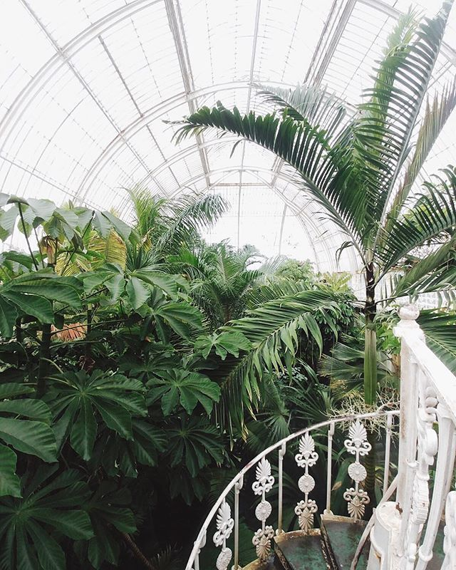 Kew Gardens is always a good idea.  We had a great time the other day with @elensham at the Orchids Festival. Seriously considering a membership.  Photo of the Palm house not the festival.   #thespacesilike  #visitlondon  #thisislondon