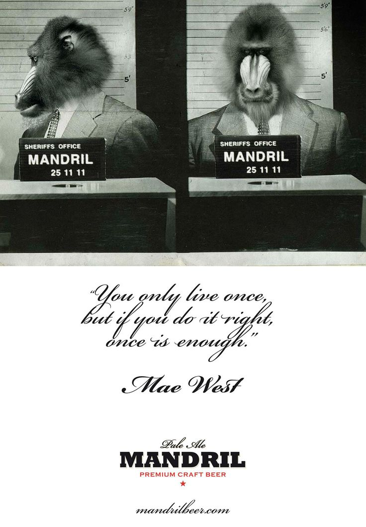 Mandril, a delicious beer with a mind!
