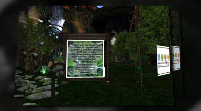 'Second Life -  RLF 2011'. Click to watch the video!: Second Life, Rlf 2011