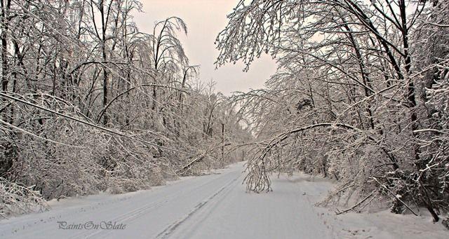 Winter Wonderland with a twist.