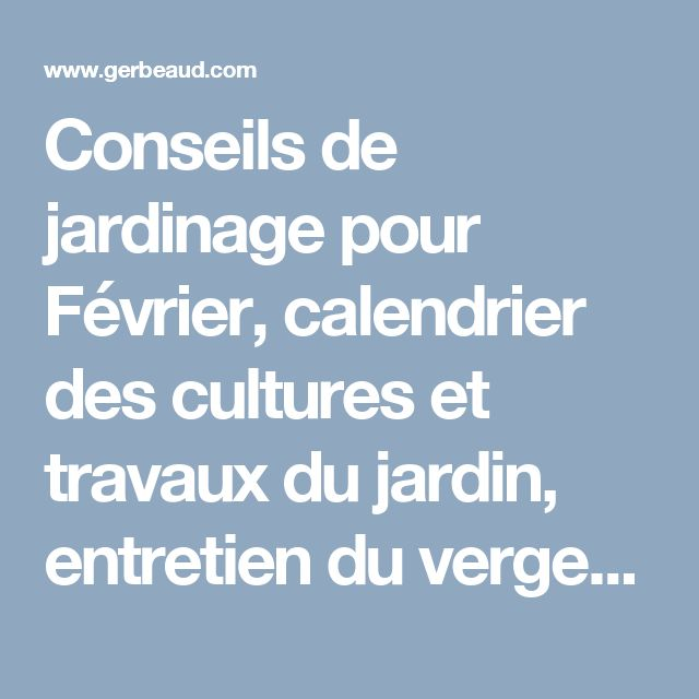 15 must see calendrier des plantations pins calendrier for Monsieur jardinage conseil