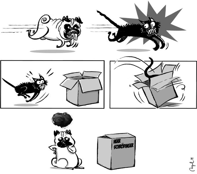 The lowdown on Professor Schrödinger's cat... (Published in Jot Down Magazine)