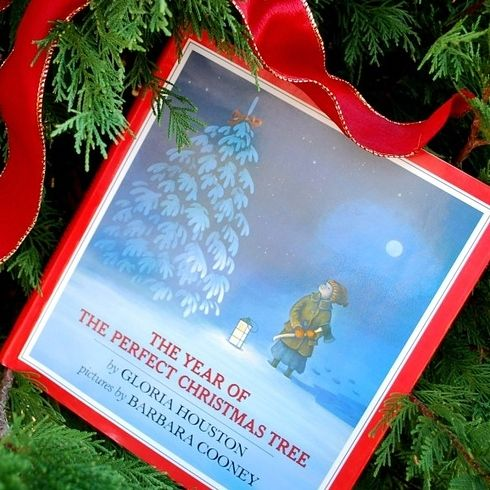 The Year of the Perfect Christmas Tree by Gloria Houston | 20 Magical Children's Christmas Books To Read Aloud