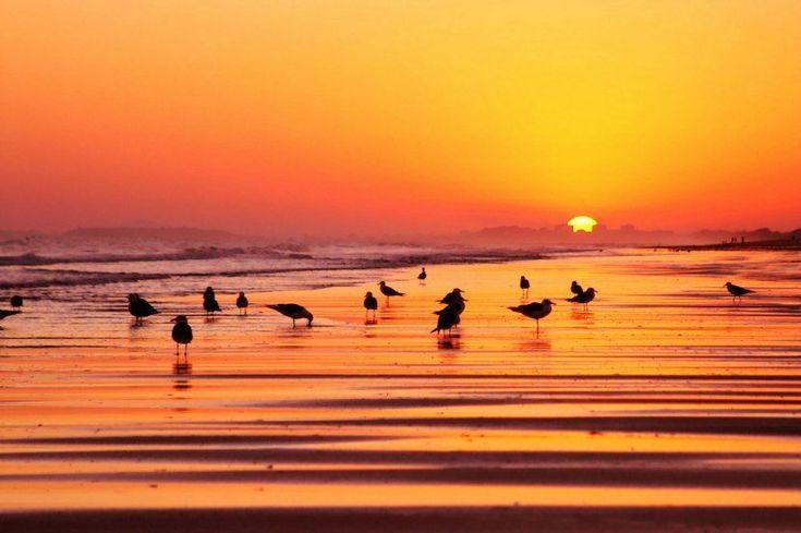 Por qué viajar a Isla Cristina - http://www.absolutjerez.com/por-que-viajar-a-isla-cristina/