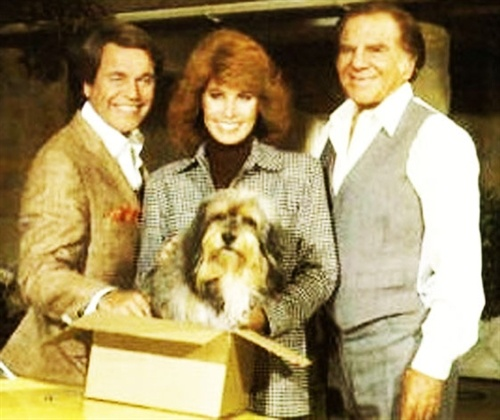 Hart to Hart -Casal 20Favorite Tv, Childhood Memories, Favoritetv, Series Tv, Hart Freeway Miss, Movie, Growing, 80 S, Classic Tv
