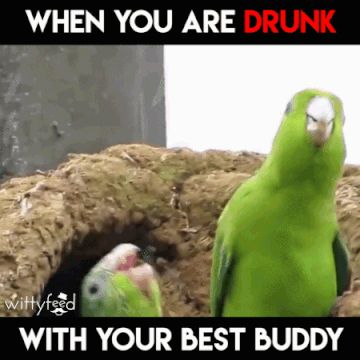 Sooo meh and meh friends when we older and get really drunk at a place lol