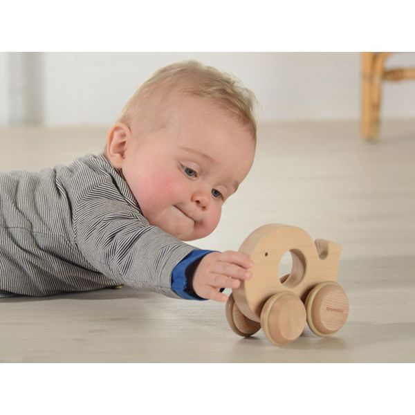 Push Along Whale - This eco-friendly toy is made of sustainable European beech. A perfect toy for baby who starts to grasp, hold and push objects. An ideal green toy made of natural European beech and free of paint and glue.