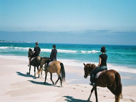 #HorseRiding On #Noordhoek Beach #CapeTown  http://www.capepointroute.co.za/moreinfoOther.php?aID=68