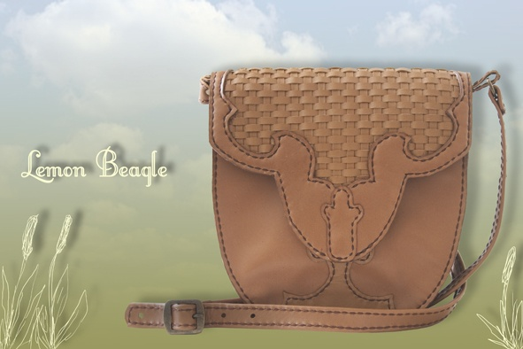 This bag is called Dixie. For more info go to http://www.facebook.com/LemonBeagle