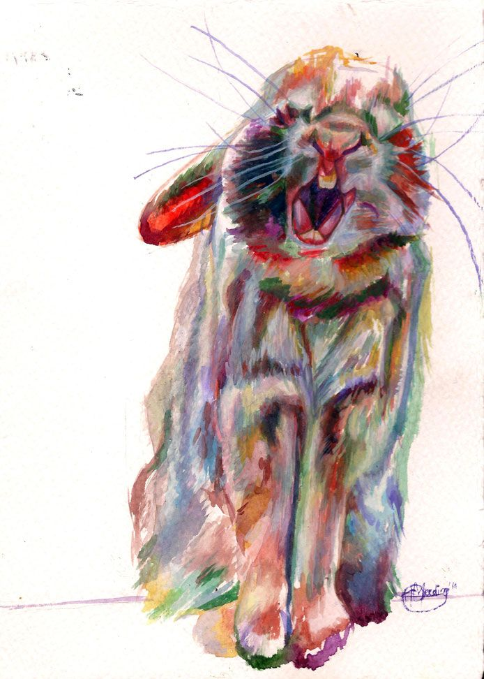 """Gaaphaas"" by Katharine Meeding Watercolour on paper 21cm x 15cm R480"