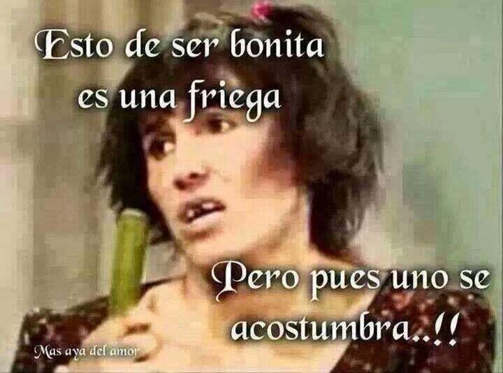Funny Monkey Meme In Spanish : Mejores imágenes de memes en cosas divertidas