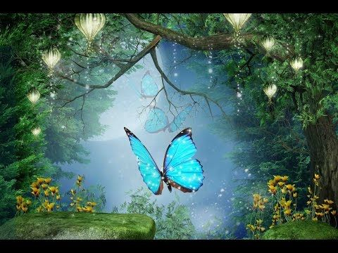 """Peaceful Music, Relaxing Music, Instrumental Music  """"Enchanted Forest"""" by Tim Janis - YouTube"""
