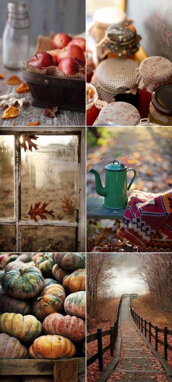 Autumn goodness at My Black Book Paris