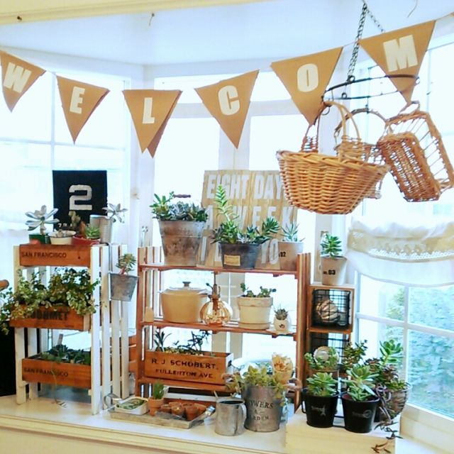 taekoさんの、すのこ棚,ガーランド,多肉植物,出窓,机,のお部屋写真