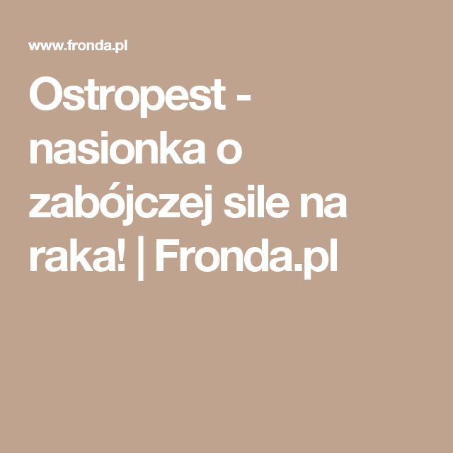 Ostropest - nasionka o zabójczej sile na raka! | Fronda.pl