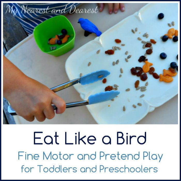 Eat Like a Bird. Fine motor and pretend play for toddlers and preschoolers. Part of a bird-themed series at My Nearest and Dearest.