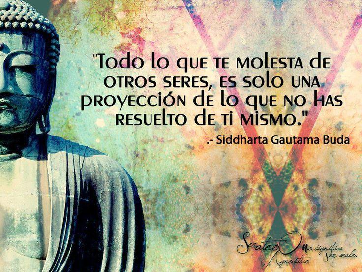 """""""Todo lo que te molesta de otros seres, es solo una proyeccion de los que no has resuelto de ti mismo"""" Siddharta Gautama Buda"""