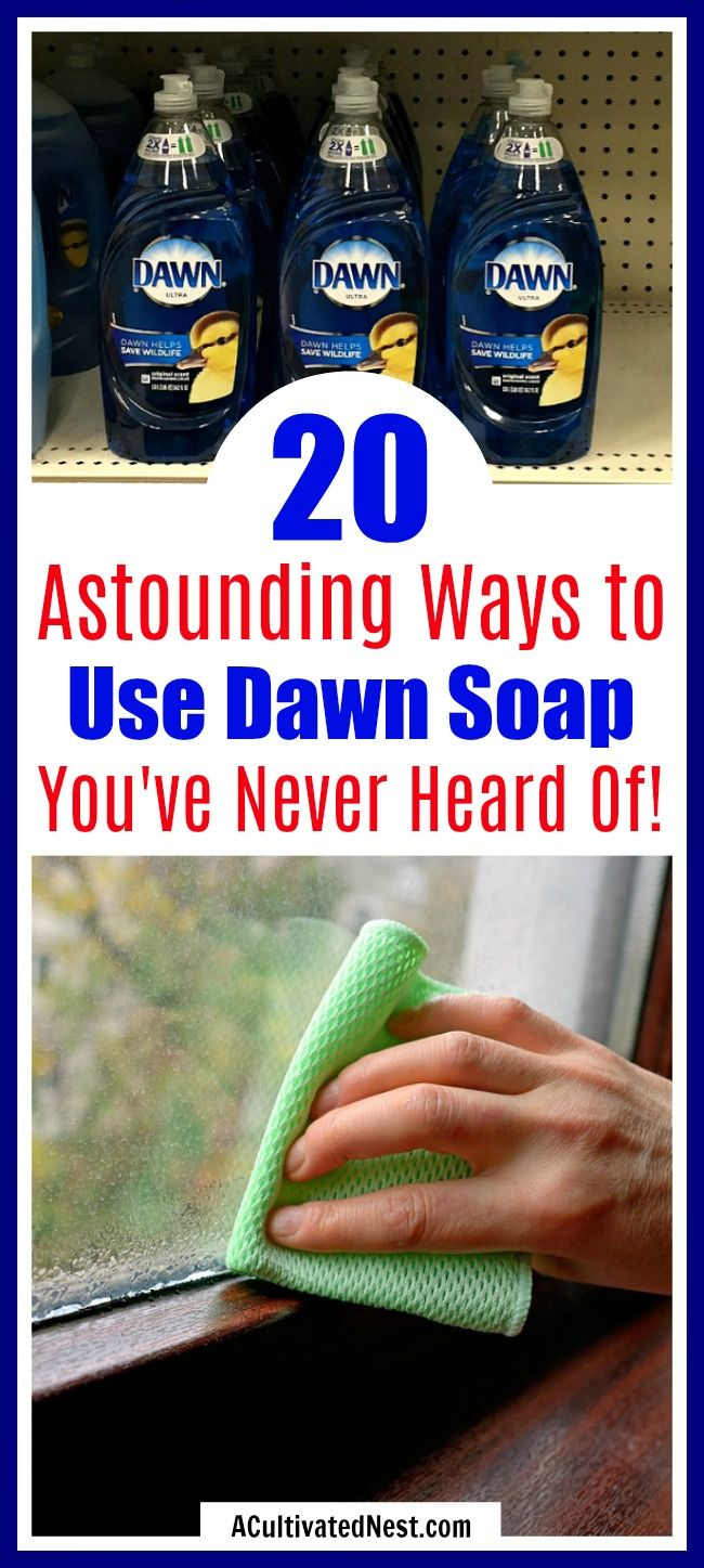 e8174c936391a3b38e37305a98d88836 20 Clever Ways to Use Dawn Dish Soap