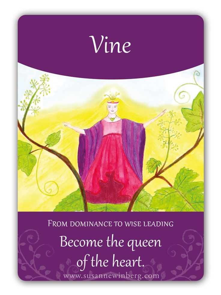 Vine - Bach Flower Oracle Card by Susanne Winberg. Message: Become the queen of the heart.