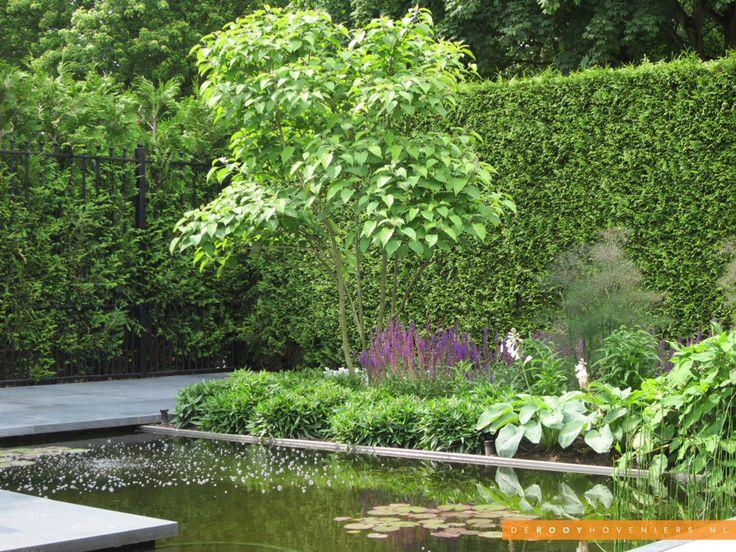 Tuin idee De Rooy Hoveniers strakke tuin vijver border beplanting Waalwijk